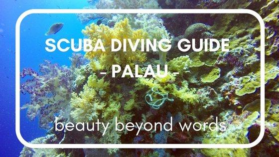 Palau SCUBA Diving Guide