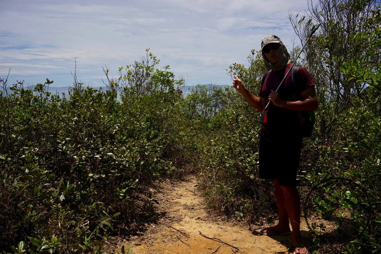 hike Lamma Island