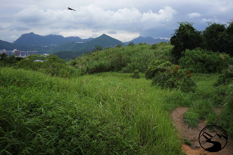 Hike High Junk Peak
