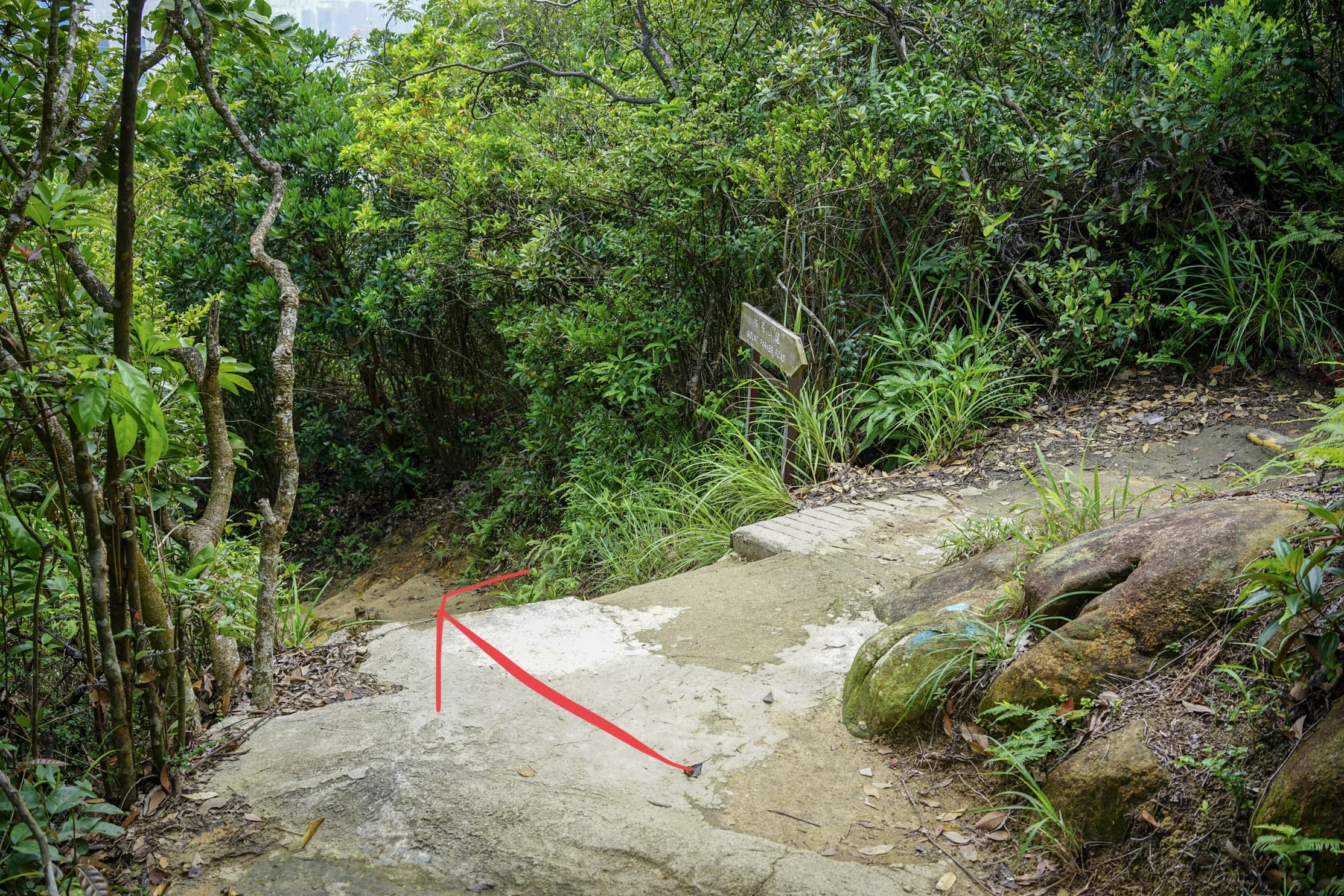 follow the trail to the left on Hong Pak Country Trail