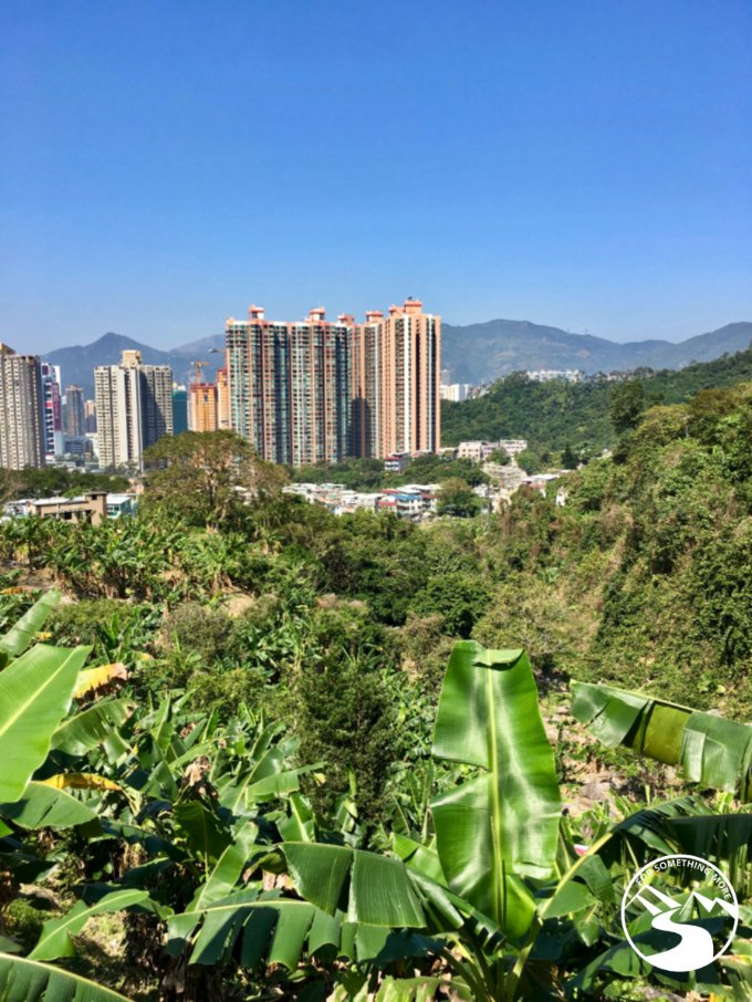 Gaining elevation through a village, as we head out of Sha Tin on our way to Suicide Cliff