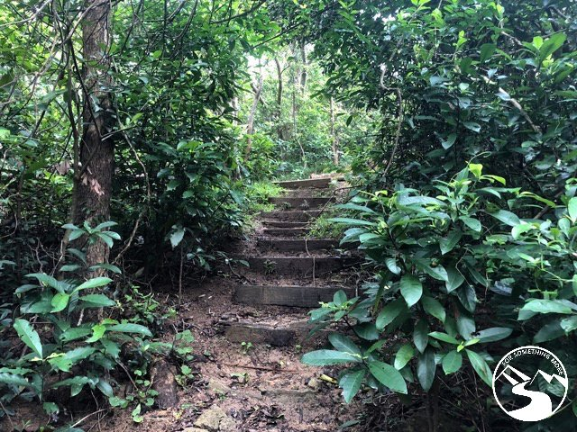 there are steps on this trail