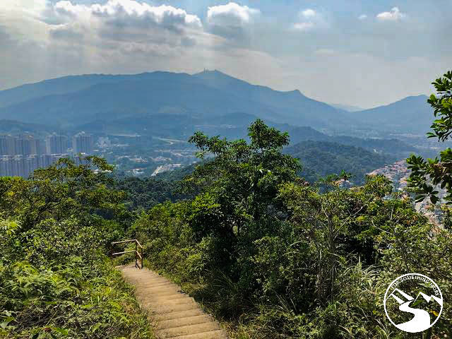 Tai Mo Shan off in the distance