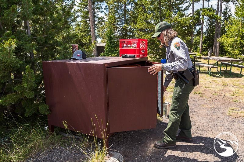 a bear box