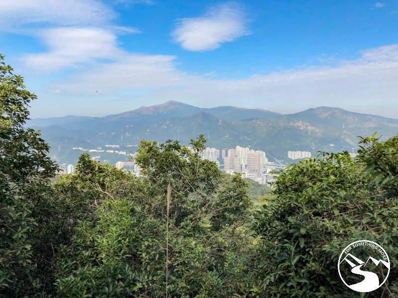 a view of Tai Mo Shan