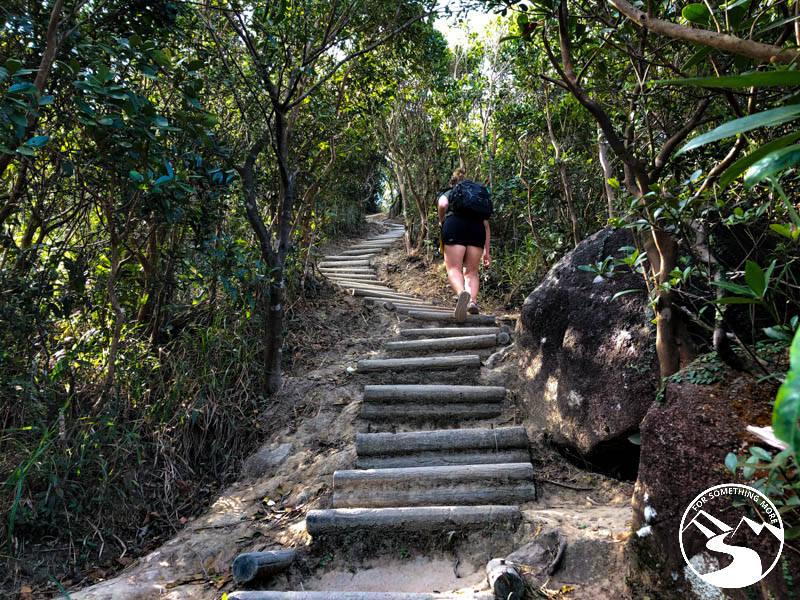 use hiking shoes