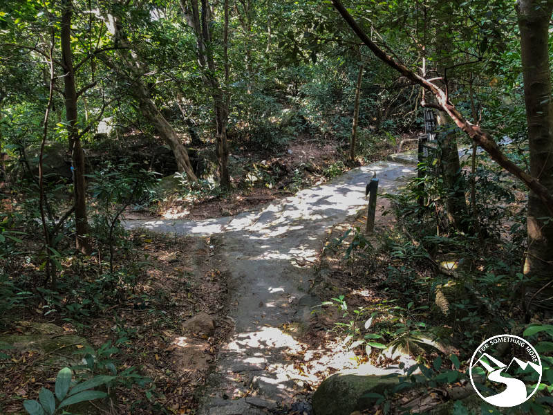 a junction in the trail