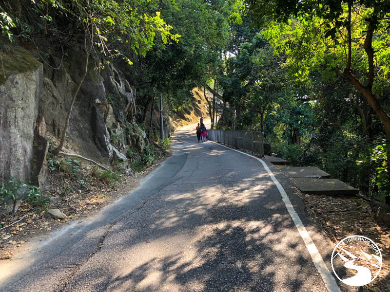 uphill road when you hike Lion Rock