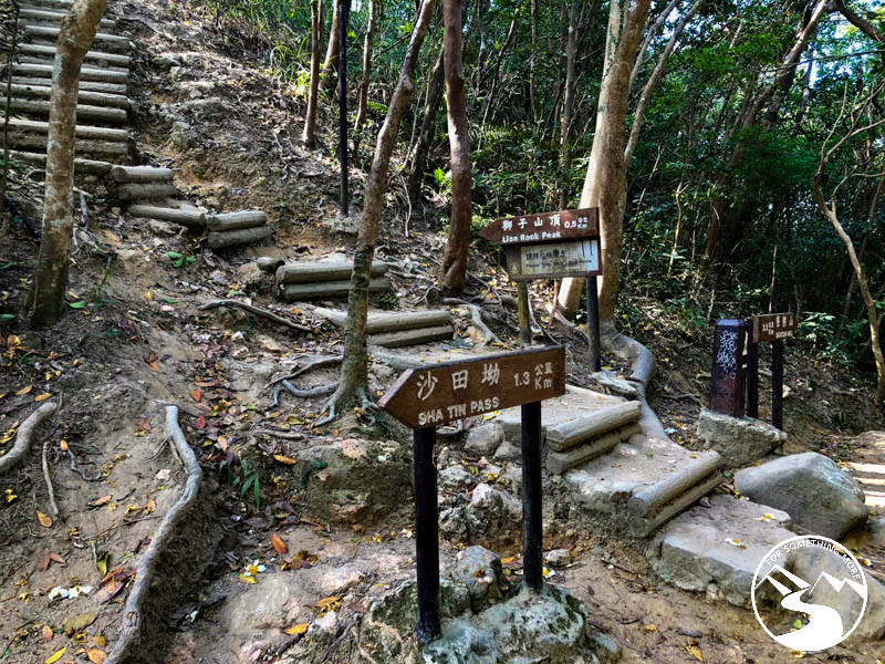 stairs to the summit of hike Lion Rock