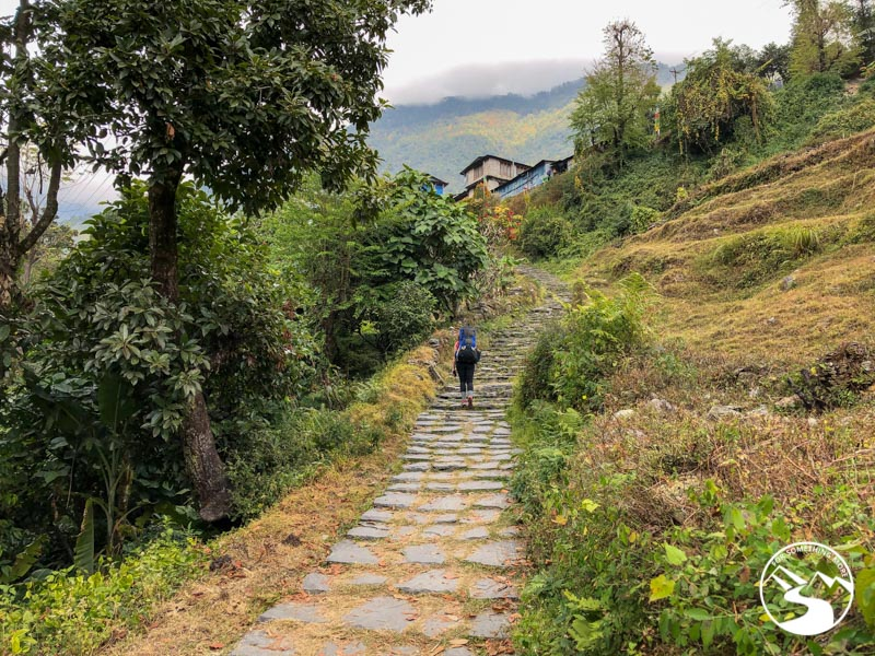 woman hiking up stairs