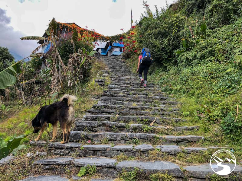woman trekking up more stairs