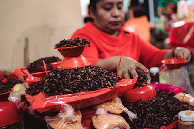 things to do in Oaxaca include eating at food markets