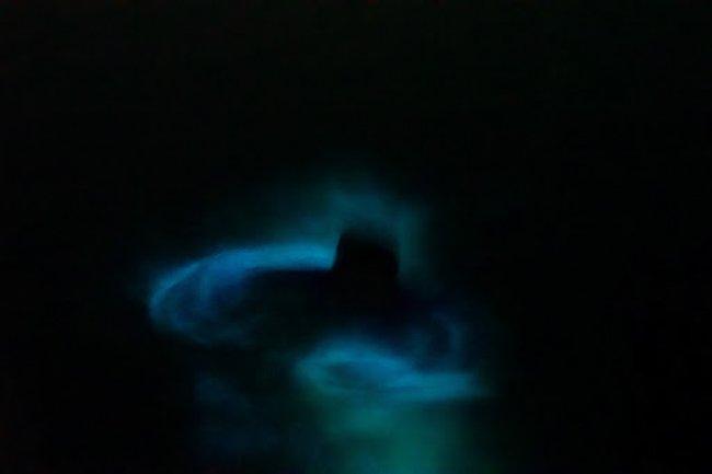 bioluminescence at Laguna Manialtepec