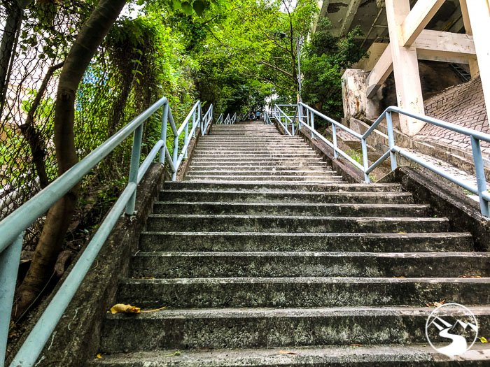 stairs up to CIS