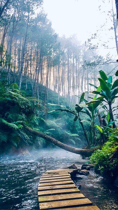 Family Adventure in the Amazon
