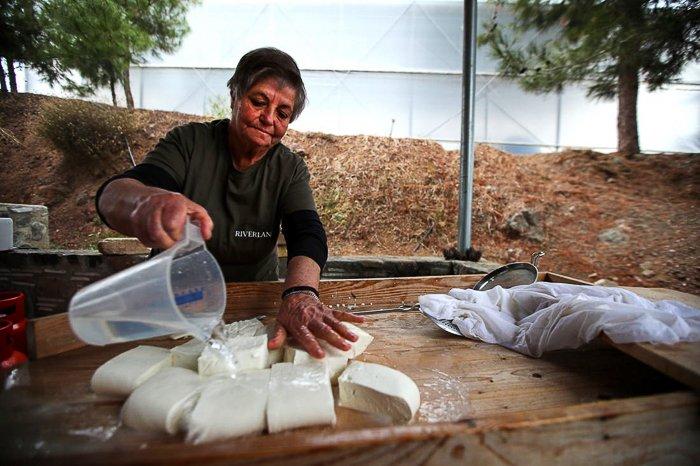 woman making Halloumi cheese