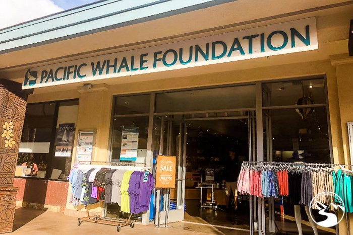 the pacific whale foundation headquarters in maui hawaii
