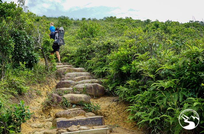 man hiking up stairs on Lung Ha Wan Country Trail (龍蝦灣)