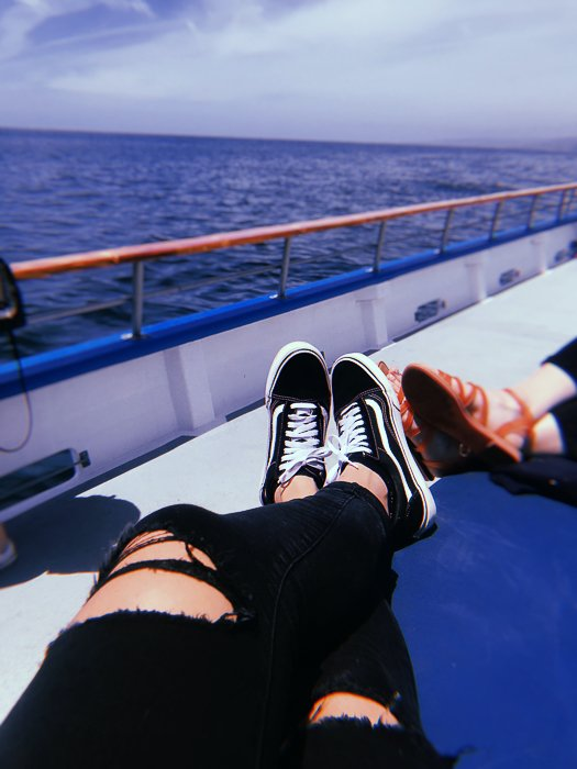 relax while whale watching