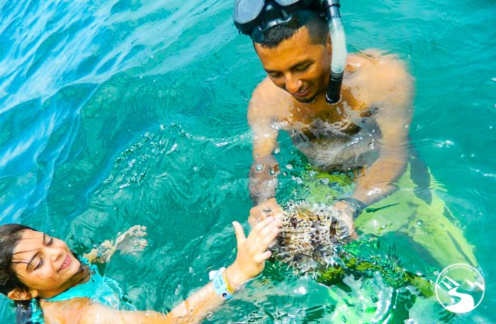 Swimming near Isla Tortuga on our Road Trip Costa Rica