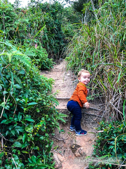 toddler hiking on the Leaping Dragon Walk (龍躍徑)