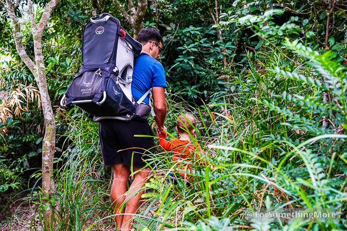 father and son hiking in Hong Kong jungle