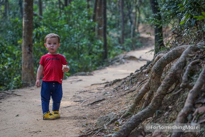 a toddler hiking in sneakers
