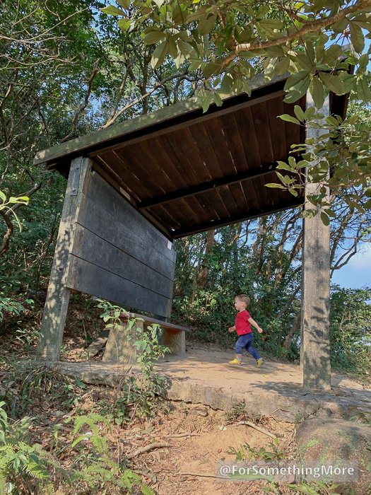 toddler exploring a forest hut on the Eagle's Nest Nature Trail (鷹巢山)