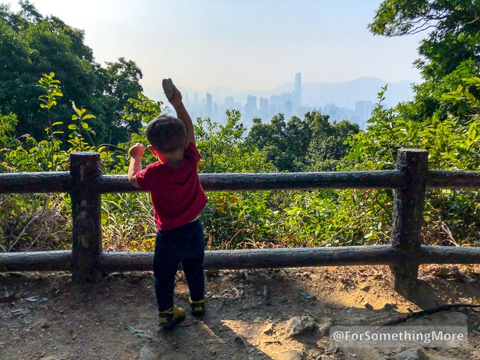 toddler throwing stones into the forest