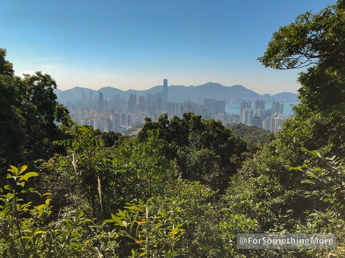 a view of the Kowloon Peninsula from the Eagle's Nest Nature Trail (鷹巢山)