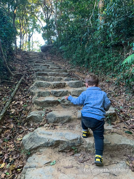 toddler hiking up stairs on the Eagle's Nest Nature Trail (鷹巢山)