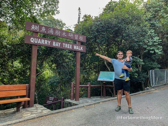 start of the Quarry Bay Tree Walk (鰂魚涌樹木研習徑)