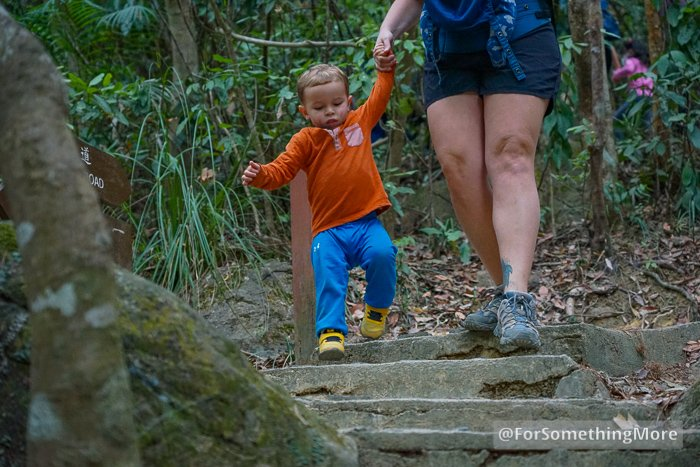 toddler hiking on a Quarry Bay hike