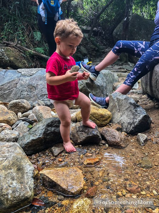 boy playing in stream onQuarry Bay Tree Walk (鰂魚涌樹木研習徑)