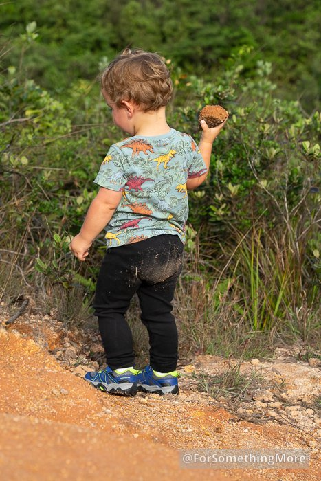 toddler throwing rock on hiking trail