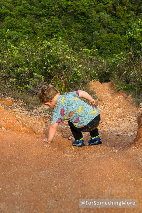 toddler hiking shoes with good traction