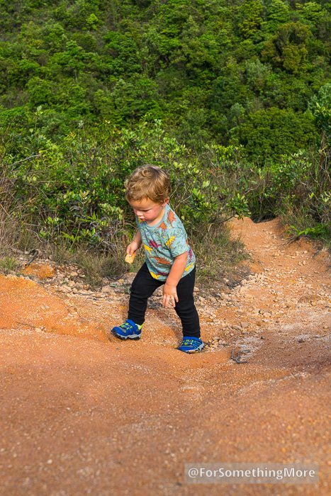 toddler hiking up steep dirt trail