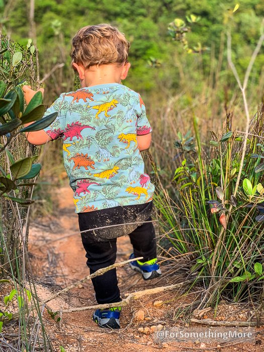 a toddler hiking on a dirt trail