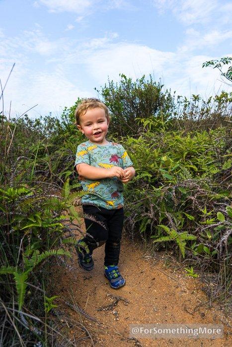 toddler hiking down dirt trail