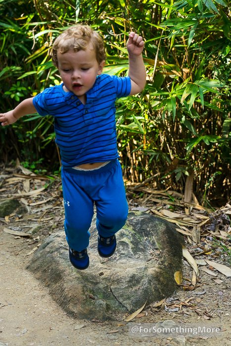 toddler jumping off small rock