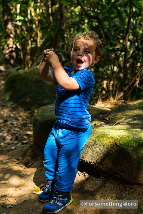 toddler hiking in hybrid hiking shoes