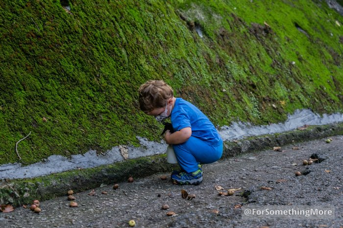 toddler hiking up a paved road