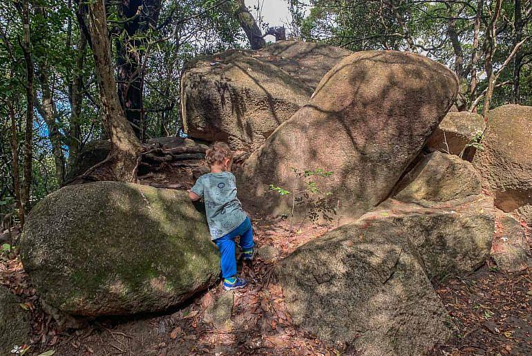 Merrell Trail Quest Jr